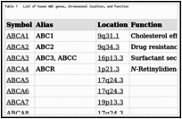 Table 1. List of human ABC genes, chromosomal location, and function.