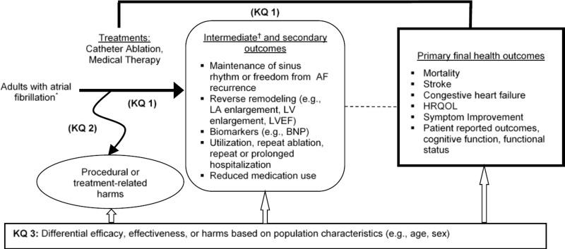 Figure A, Analytic framework for catheter ablation for