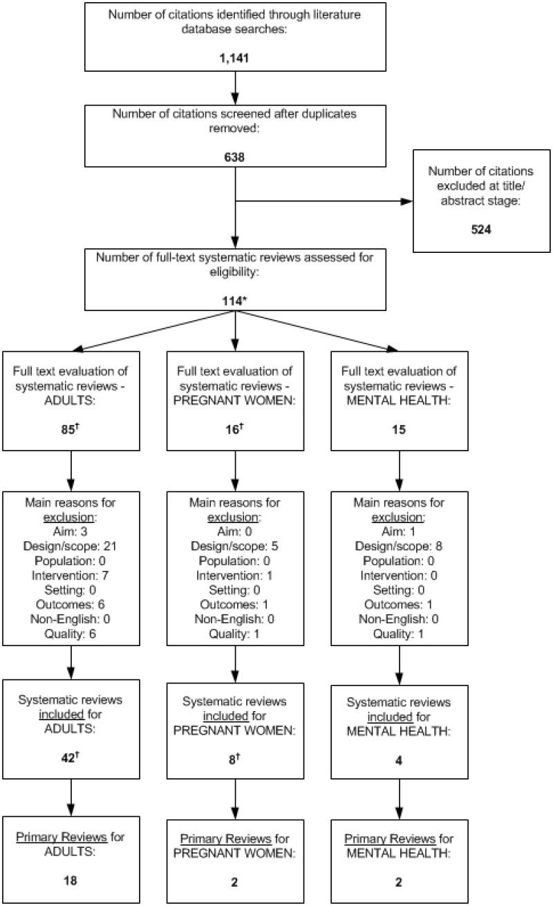 Appendix B Figure 1, Literature Flow Diagram: Systematic Reviews ...