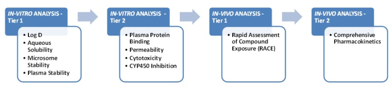 In Vitro and In Vivo Assessment of ADME and PK Properties During