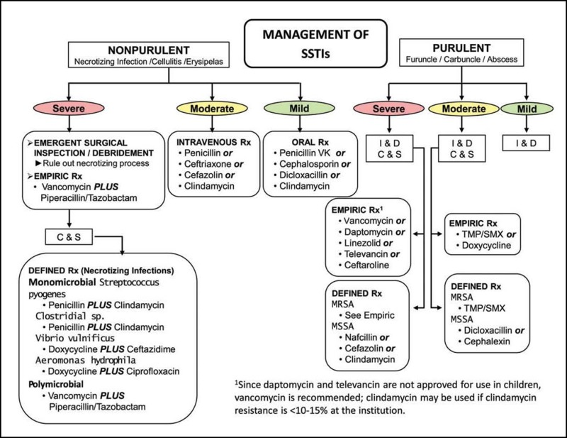 Figure 2. . Algorithm for the Management of Skin and Soft Tissue Infections.