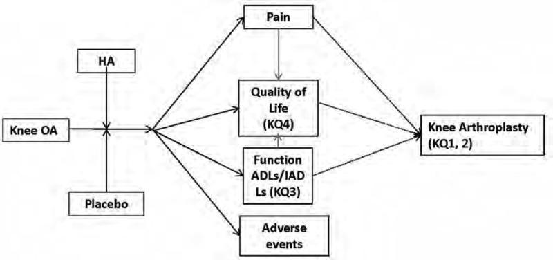 analytic framework of the effects of hyaluronic acid (ha) (vs