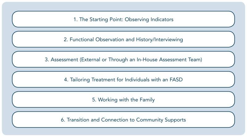Addressing Fasd In Treatment Addressing Fetal Alcohol Spectrum