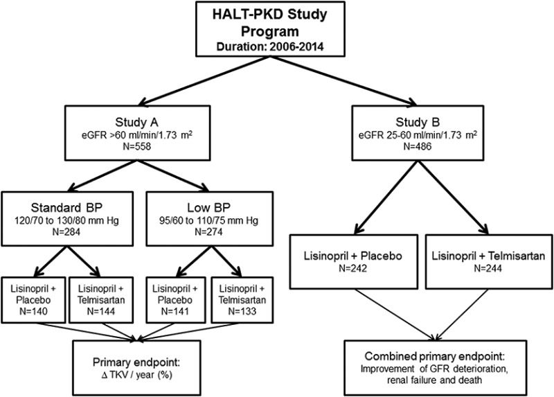 Figure 2. [Schematic representation of the HALT-PKD ...