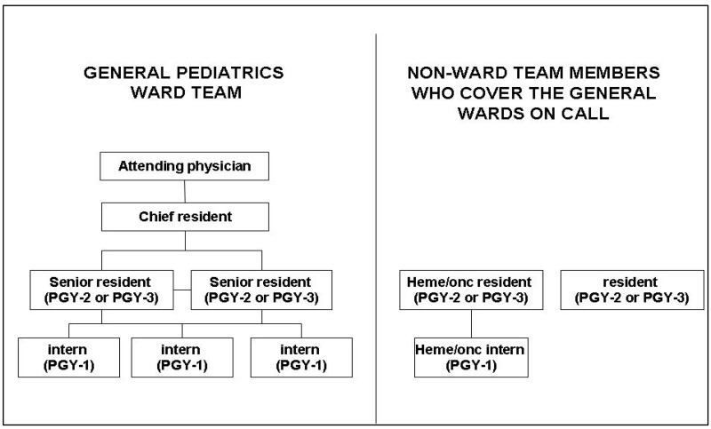 Figure 1. The organizational structure of the ward teams.