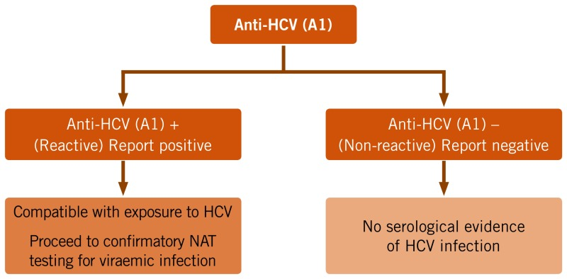 HOW TO TEST FOR CURRENT OR PAST HCV INFECTION (HCV EXPOSURE