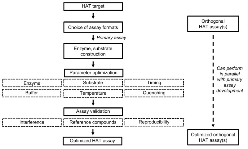 protease inhibition assay protocol