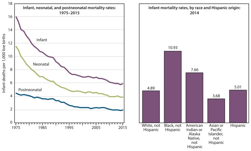 Figure 7 infant mortality rates by infant age at death and race consists of a line graph and a bar chart the line graph shows infant ccuart Image collections