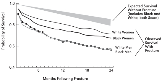 Figure 5-1. Observed and Expected Race- and Sex-Specific Survival Following Fracture of the Hip, All Ages Combined.