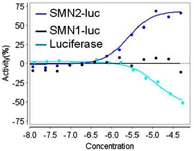 Figure 3. Activity of the probe molecule in SMN2, SMN1 reporter cell lines and in an in vitro assay against purified luciferase enzyme.
