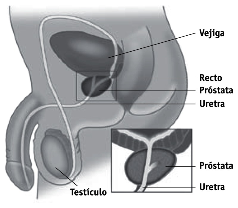 tratamiento hormonal para tabletas de cáncer de próstata
