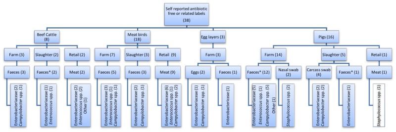 Restriction in the use of antibiotics in food animals and