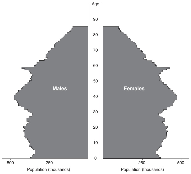Figure 1.2. Age and gender distribution of the UK population in 2005.