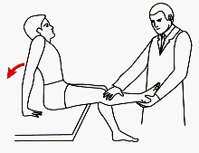 Figure 3. Instructions for sitting knee extension test.