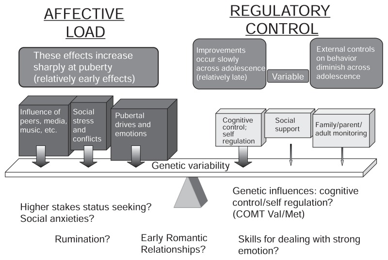 FIGURE 3-3. Balance between affective load and sources of regulatory control.