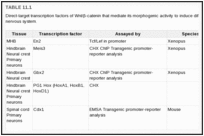 TABLE 11.1. Direct-target transcription factors of Wnt/β-catenin that mediate its morphogenic activity to induce different regions of the posterior nervous system.