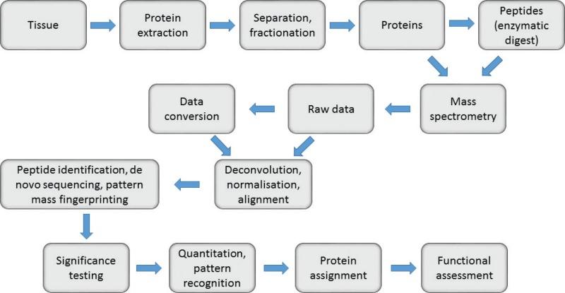 Figure 1 Flowchart And Procedures For A Generic Proteomics