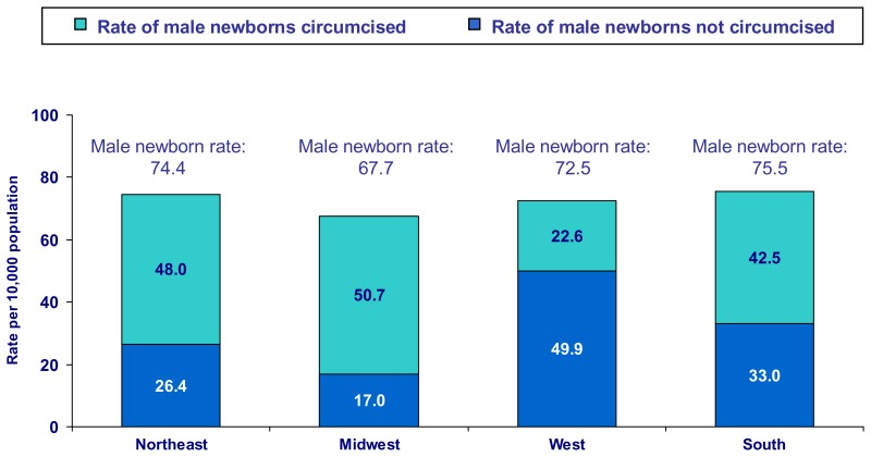 Figure 3. Circumcision rates were greater in the Midwest and the Northeast even though the male newborn rate did not vary substantially by region, 2005*.