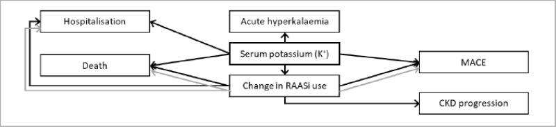 Figure 2 Modelled Relationships Between Potassium Levels And Outcomes In The Chronic Kidney Disease Population Pharmacoeconomic Review Report Sodium Zirconium Cyclosilicate Lokelma Ncbi Bookshelf