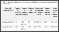 Table 1. Results of injection of the construct DNAs in pnd-w1 embryos (modified from ref. , with permission).