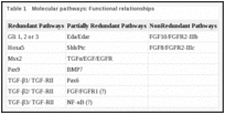 Table 1. Molecular pathways: Functional relationships.