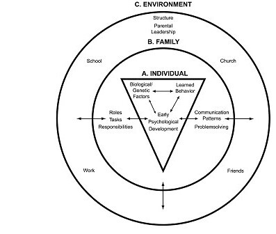 Individual, Family, and Environmental Systems.