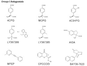 Figure 2. Chemical structures and abbreviated names of most commonly used group-I mGluR antagonists.