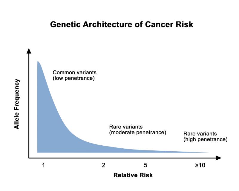 Cancer Genetics Overview Pdq Pdq Cancer Information Summaries Ncbi Bookshelf