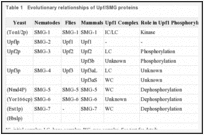 Table 1. Evolutionary relationships of Upf/SMG proteins.