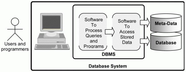 dbms books. For a DBMS to be able to store