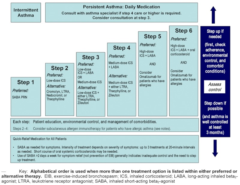 Figure 4 5 stepwise approach for managing asthma in youths 12