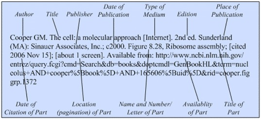 Books and Other Individual Titles on the Internet - Citing Medicine