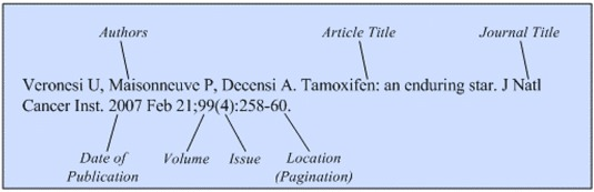 Illustration of the general format for a reference to a journal article.