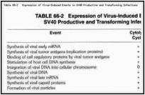 Table 66-2. Expression of Virus-Induced Events in SV40 Productive and Transforming Infections.