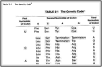Table 5-1. The Genetic Codea.