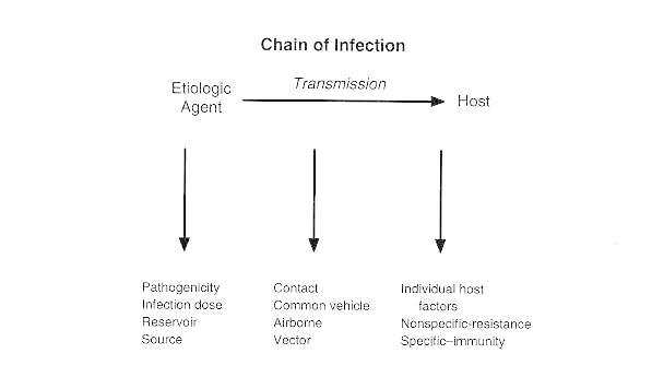 Figure 9-1. Summary of important aspects involved in the chain of any infection.