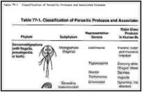 Table 77-1. Classification of Parasitic Protozoa and Associated Diseases.