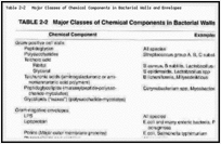 Table 2-2. Major Classes of Chemical Components in Bacterial Walls and Envelopes.