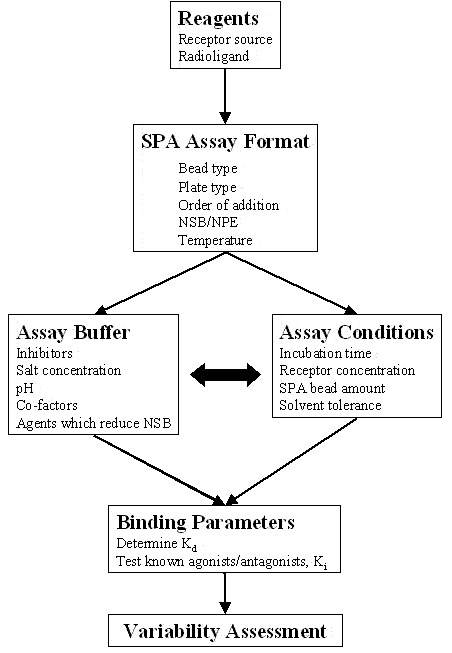Receptor Binding Assays For Hts And Drug Discovery Assay Guidance
