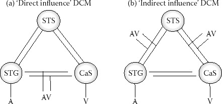FIGURE 13.7. Candidate dynamic causal models.