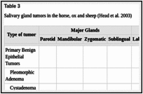Table 3. Salivary gland tumors in the horse, ox and sheep (Head et al.