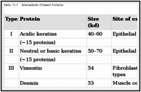 Table 11.1. Intermediate Filament Proteins.