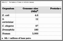 Table 4.1. The Numbers of Genes in Cellular Genomes.