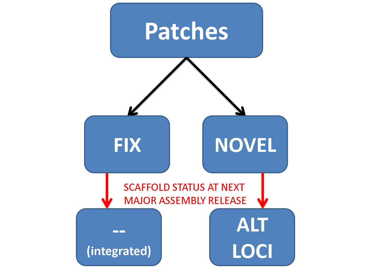 Patch Type and Data Flow