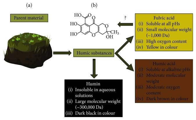The characterization and classification of humic substances