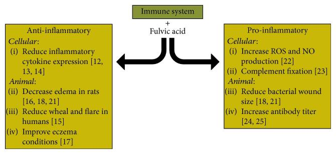 Known literature for the effects of fulvic acid on the immune system