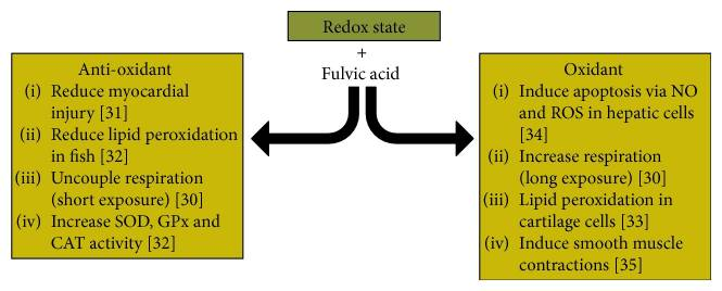 Known literature for the effects of fulvic acid on the redox state of cells.