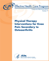 Cover of Physical Therapy Interventions for Knee Pain Secondary to Osteoarthritis
