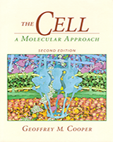 Cover of The Cell