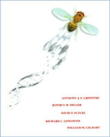 Cover of An Introduction to Genetic Analysis